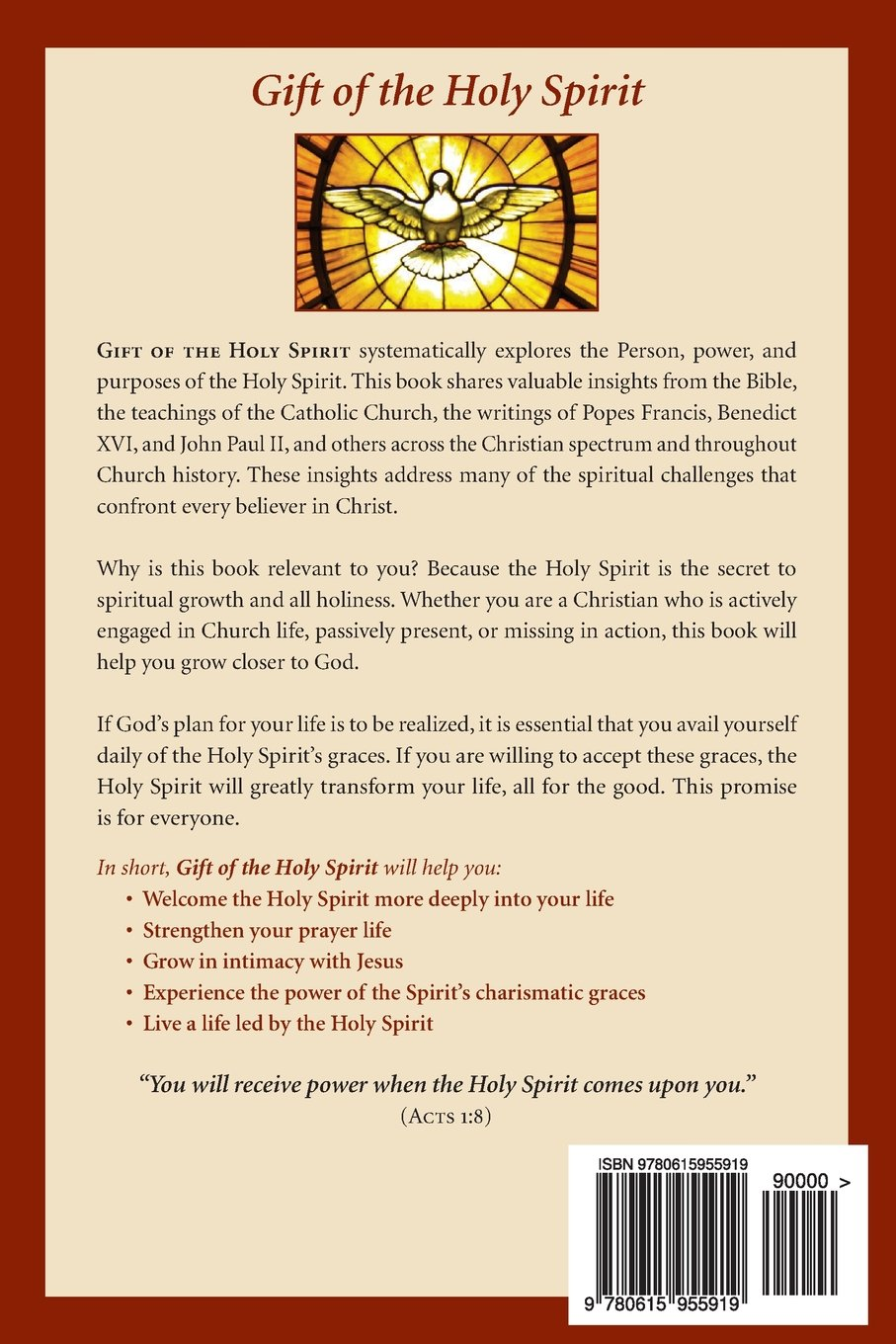 Gift of the holy spirit what every christian should know about gift of the holy spirit what every christian should know about the holy spirit paul s ragan 9780615955919 amazon books negle Image collections
