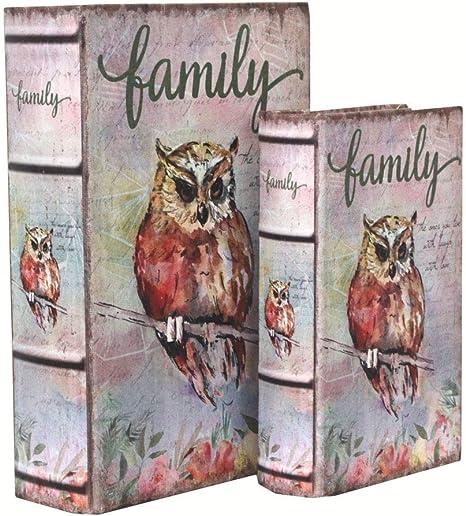 Keyhome - Caja Libro con Tapa, 2 Cajas con diseño de búho, Caja para Guardar Objetos, Caja Vintage, fantasía, decoración del hogar: Amazon.es: Hogar