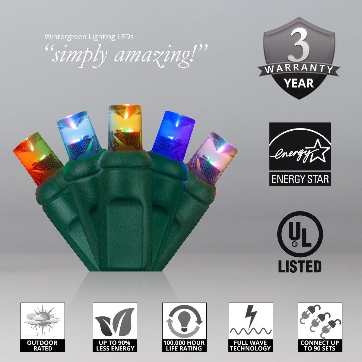 Amazon.com : Wintergreen Lighting 70 Light Christmas Light : String ...