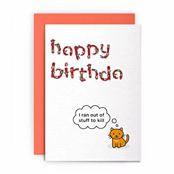 Cat Funny Rude Humorous I Ran Out Of Stuff To Kill Birthday Card