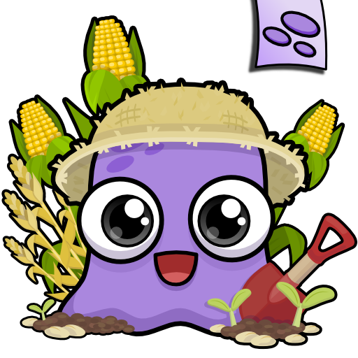Pole Bean Varieties - Moy Farm Day