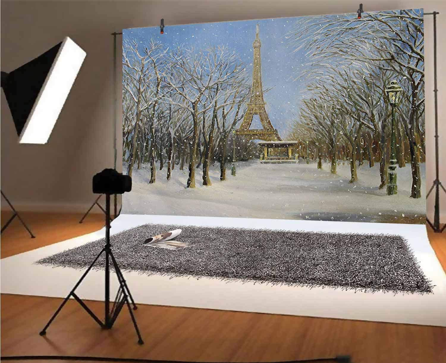 Country 12x10 FT Vinyl Photography Backdrop,Winter Scene of Historical Eiffel Tower in Paris Snowy City Europe Urban View Background for Photo Backdrop Baby Newborn Photo Studio Props