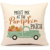 """4TH Emotion Fall Pumpkin Truck Throw Pillow Cover Autumn Quotes Cushion Case for Sofa Couch 18"""" x 18"""" Inch Cotton Linen (Patch)"""