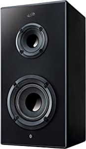 iLive iSB65B Portable Bluetooth Speaker (Black)