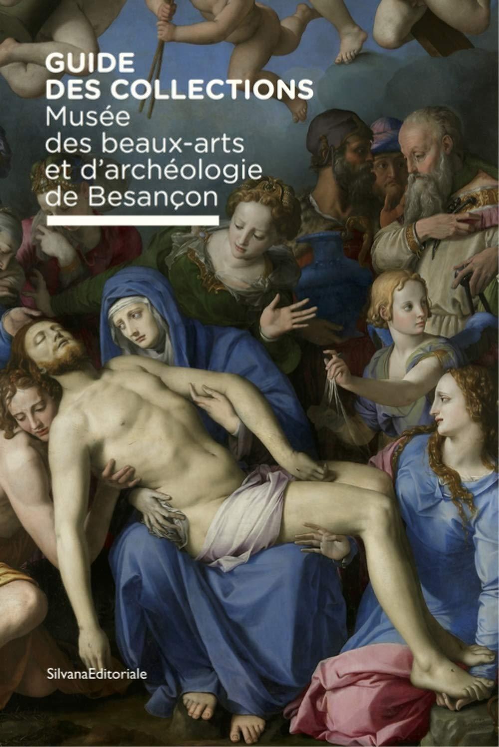 Musée des beaux-arts et d'archéologie de Besançon. Guide des collection. Ediz. illustrata (Arte)