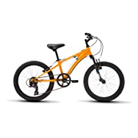 "Diamondback Bicycles Cobra 20 Youth 20"" Wheel Mountain Bike, Orange"