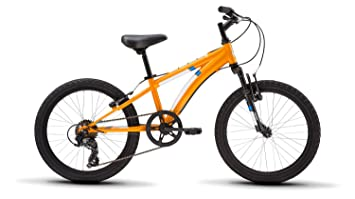 Amazon com : Diamondback Bicycles Cobra 20 Youth 20