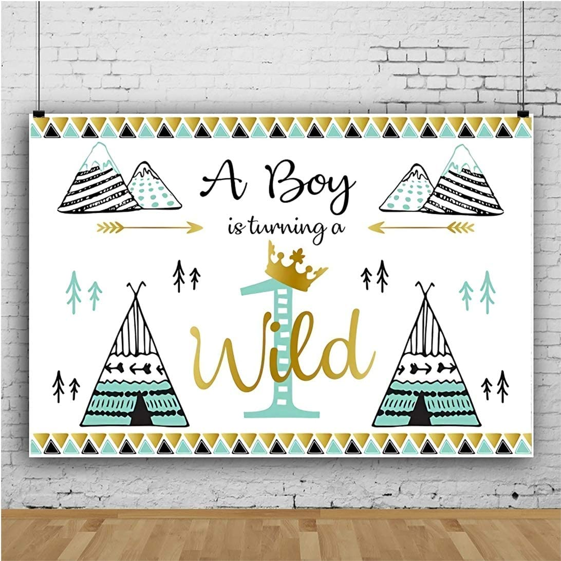 Yeele Wild One Backdrop 10x8ft Baby 1st Birthday Photography Background One Year Prince Birthday Party Banner Artistic Portrait 1st Cake Smash Photo Booth Props