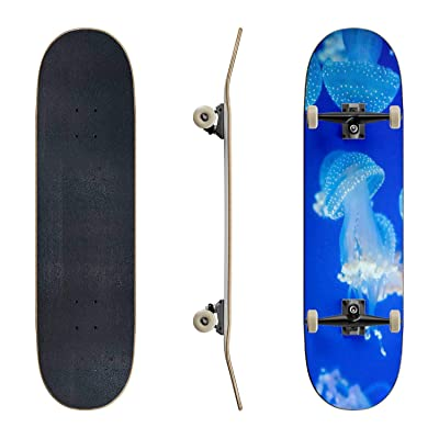 EFTOWEL Skateboards Spotted Jellyfish in The sea Jellyfish Stock Pictures Royalty Free Classic Concave Skateboard Cool Stuff Teen Gifts Longboard Extreme Sports for Beginners and Professionals : Sports & Outdoors