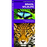 Brazil Wildlife: A Folding Pocket Guide to Familiar Animals (A Pocket Naturalist Guide)