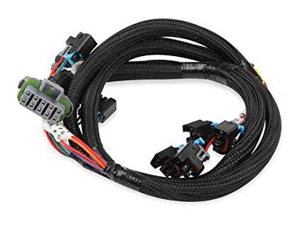 Stupendous Amazon Com Holley Efi 558 214 Multec Injector Harness For Ls Swap 2 Wiring Cloud Oideiuggs Outletorg