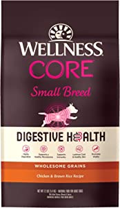 Wellness CORE Digestive Health Dry Dog Food
