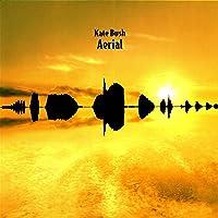 Aerial (2018