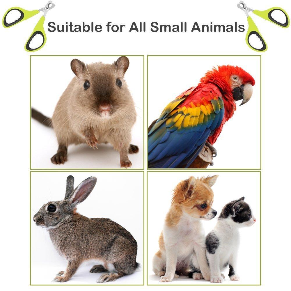 Ewolee Cortaúñas Gato Profesional - Cortador Uñas de Acero Inoxidable para Gatos, Perros Pequeños y Conejos(Verde): Amazon.es: Productos para mascotas