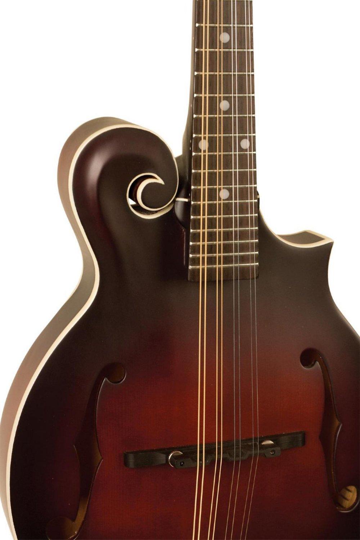 The Loar LM-310F-BRB Honey Creek F-Style Mandolin by The Loar (Image #5)