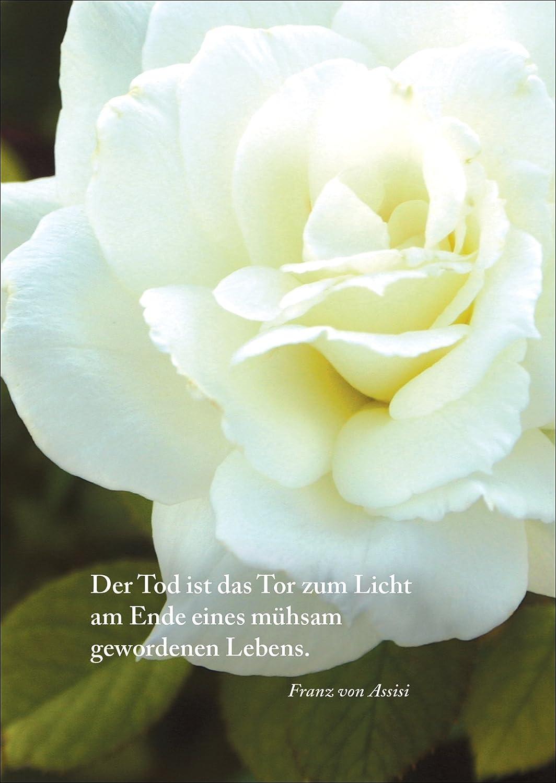 Trauerkarte: Der Tod Ist Das Tor Zum Licht Am Ende Eines Mühsam Gewordenen  Lebens. (Franz Von Assisi)   Beileidskarte Kondolenzkarte Trauer Beileid ...