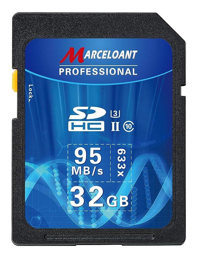 Amazon.com: Tarjeta SD de 32 GB versión actualizada ...