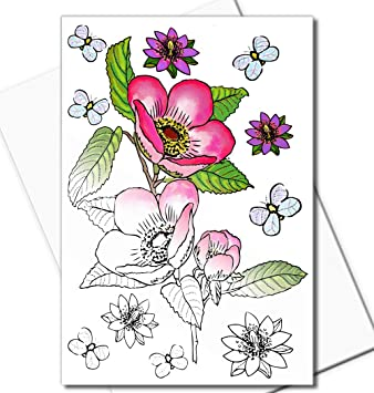 Amazon.com : Art Eclect Adult Coloring Greeting Cards for Birthday ...