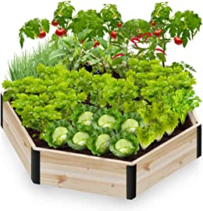 Pintia1 Hexagon Wooden Raised Garden Bed Planter for Vegetables, Grass, Lawn, Yard (48X41.5X10 INCH, Natural)
