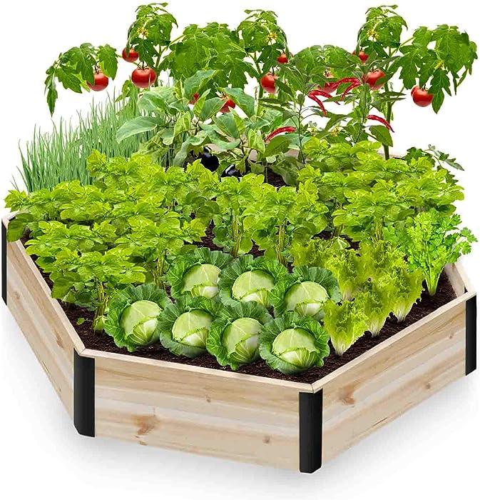 Top 10 Garden Raised