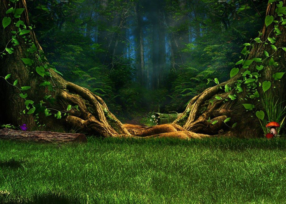 自然景色写真背景布7 x 5ftスプリンググリーンフォレストMeadow Lawn Grassテーマのウェディングブースの背景ビニール写真プロップStudio   B07DY59RRH