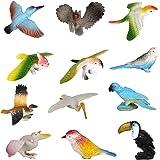 SUPER TOY New Plastic Birds Model Toy 12 pcs Multi-color