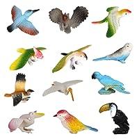 Lot de 12pcs Animaux Oiseaux Modèles en Plastique Jouets Multi-Couleurs