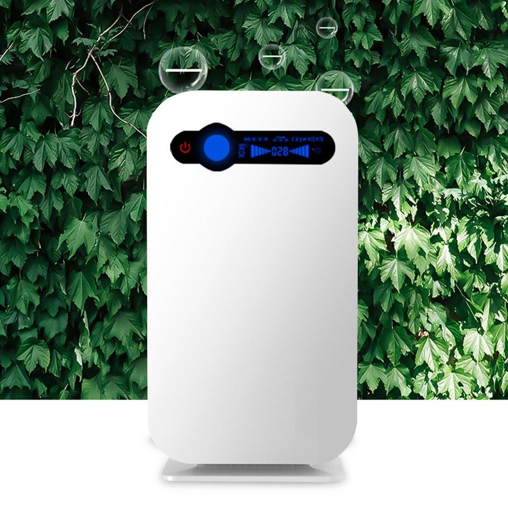 HANSHUMY 空気清浄機 空気浄化機 消臭器 脱臭機 家庭用 大型 殺菌 PM2.5対応 HEPAHESA マイナスイオン ダブル空気質量センサー 温度湿度みはり機能 チャイルドロック保護 低騒音 省エネ 花粉症防止 ~15畳(中京間) 白   B07FVTKMFN