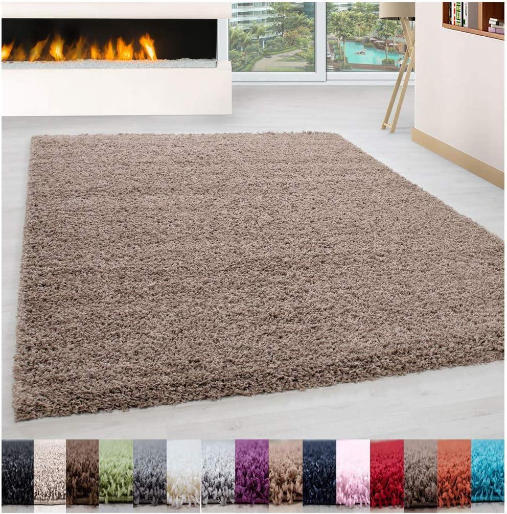 Carpet 1001 Alfombra de salón Pelo Largo Pelo Largo Pelo Largo Fácil Cuidado Pelo de 3 cm de Altura Certificado Oeko Tex - Beige, 160x230 cm
