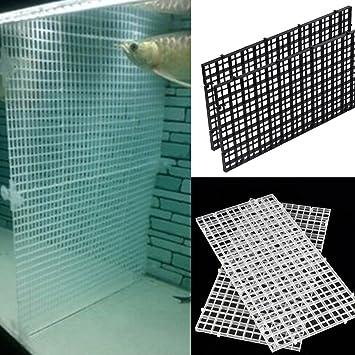 SDYDAY Bandeja separadora para acuario con aislamiento, filtro inferior transparente: Amazon.es: Productos para mascotas