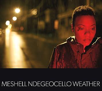 Meshell Ndegeocello 2013