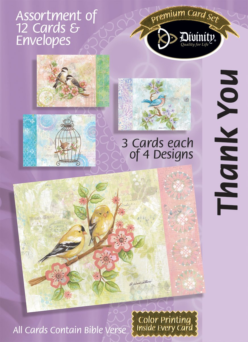 Amazon Divinity Boutique Greeting Card Assortment Thank You