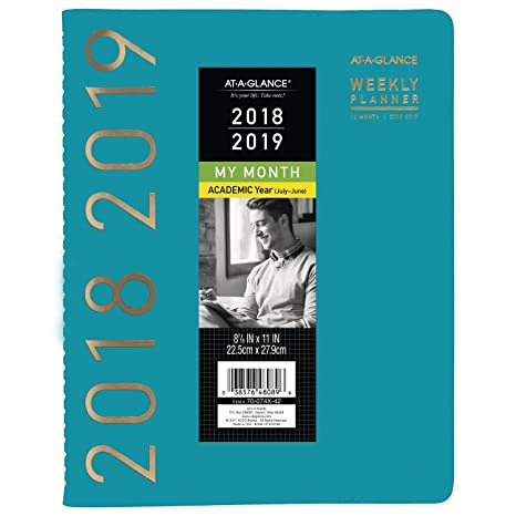 AT-A-GLANCE 2018-2019 Academic Year Monthly Planner, 8-7/8 x 11, Contemporary, Teal (70074X42)