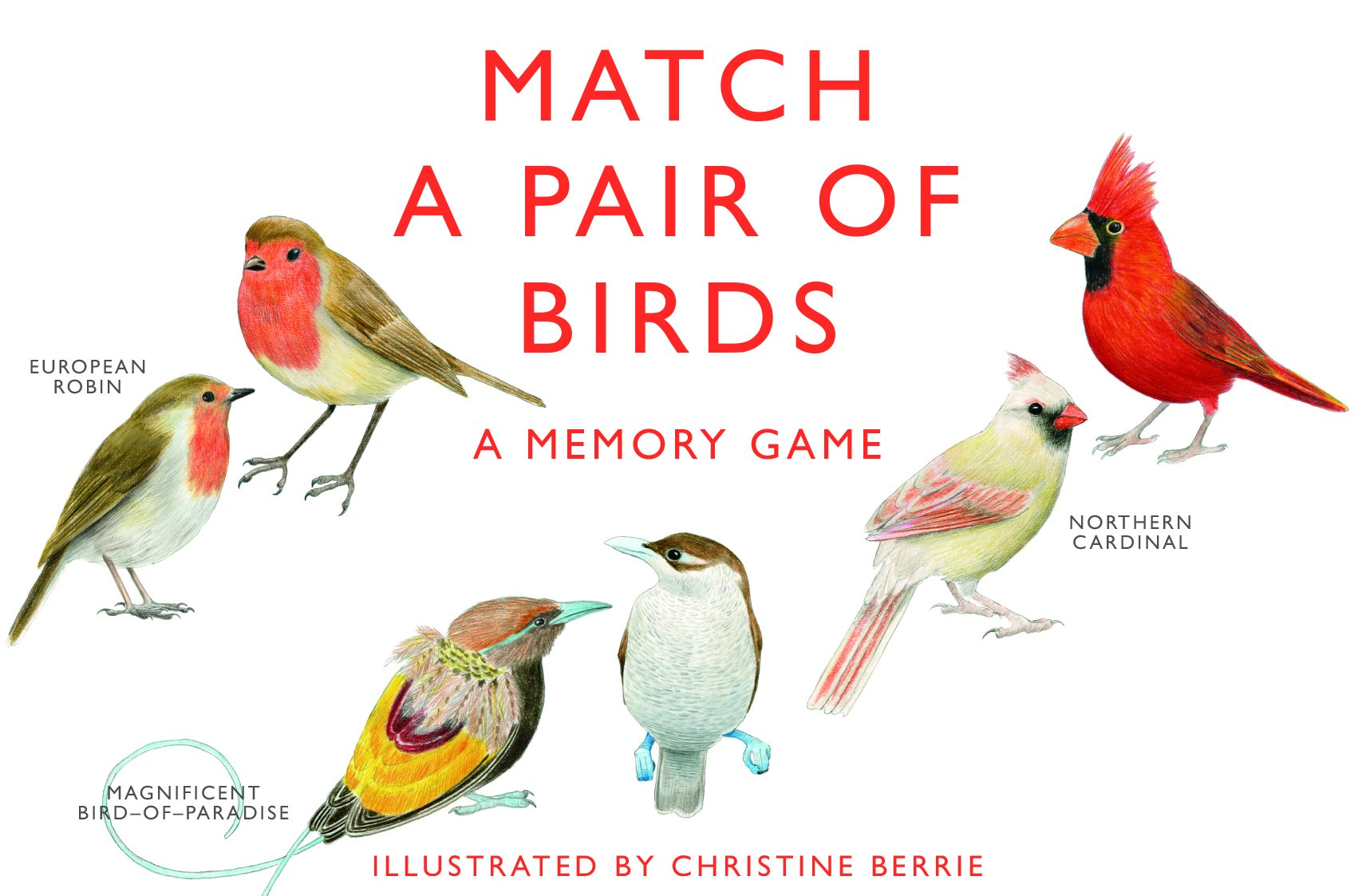 match a pair of birds a memory game christine berrie