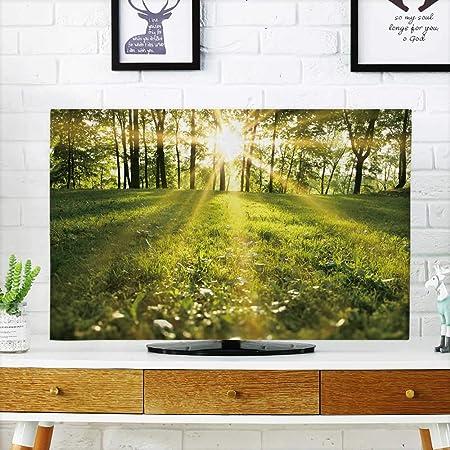 Analisahome Protege tu televisor con luz Solar en el Bosque Verde SPRTime para Proteger tu televisor de 48,26 cm de Ancho x 76,2 cm de Alto/TV de 81,28 cm: Amazon.es: Hogar
