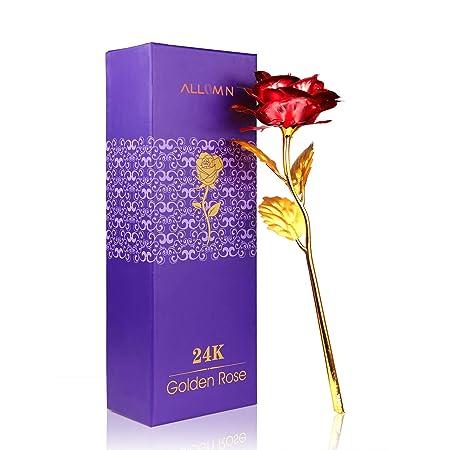 Rosa 24 K chapado en oro rosa flor con caja de regalo mejor regalo para el día de San Valentín Día de la madre Navidad cumpleaños ...