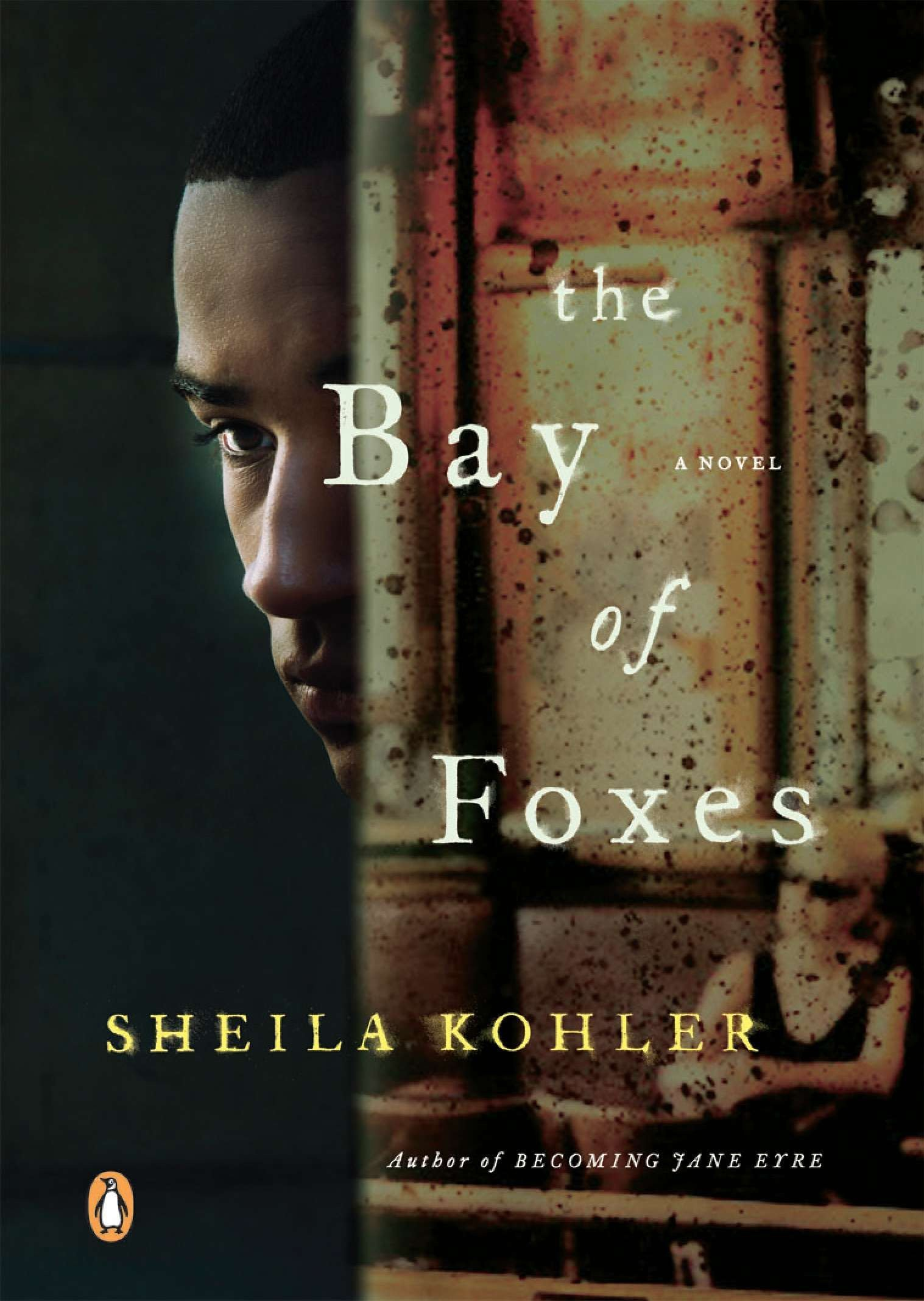 Read Online The Bay of Foxes: A Novel pdf