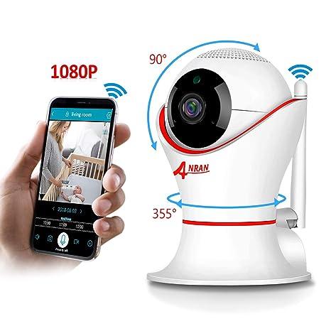 Différents modèles de caméras IP