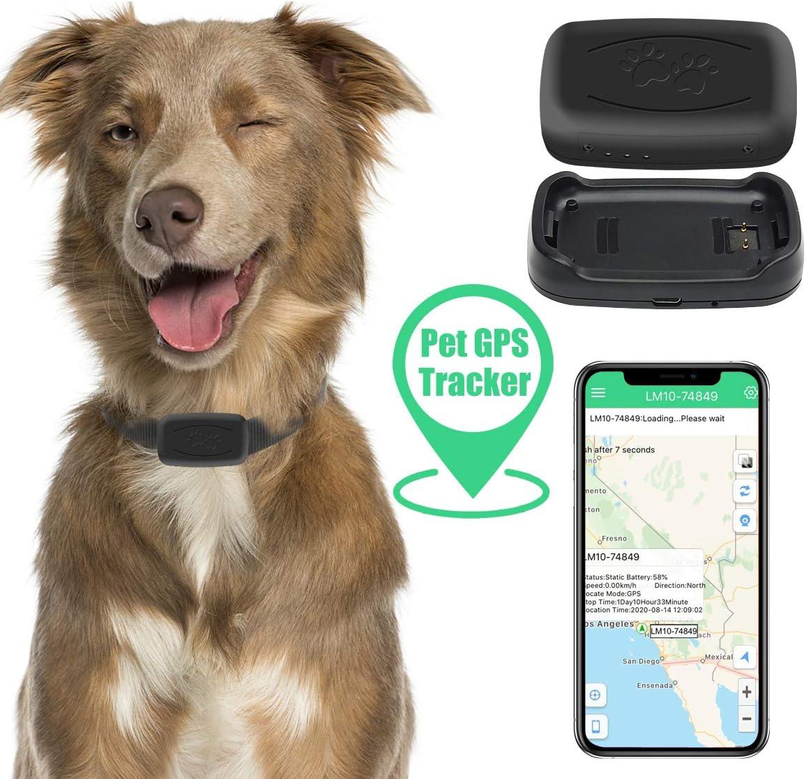 Zebbyee Tractive Localizador GPS, Rastreador de Mascotas GPS, Localizador de Perros y Gatos en Tiempo Real y Monitor de Actividad, Dispositivo de ...