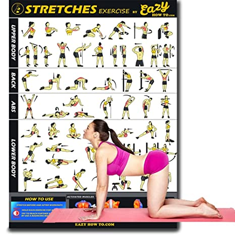 Build Strength /& Muscle Home Gym Chart Tone Eazy How To Suspension Cables Exercise Workout Banner Poster BIG 28 X 20 Train Endurance