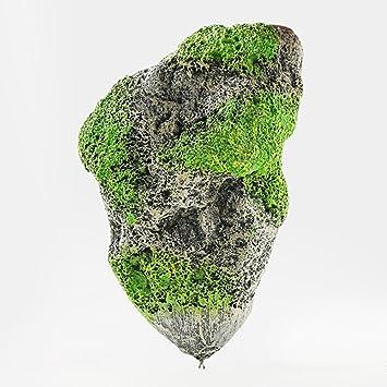 GEZICHTA - Figura Decorativa para pecera, diseño Flotante de Rock, con Piedra suspendida: Amazon.es: Productos para mascotas