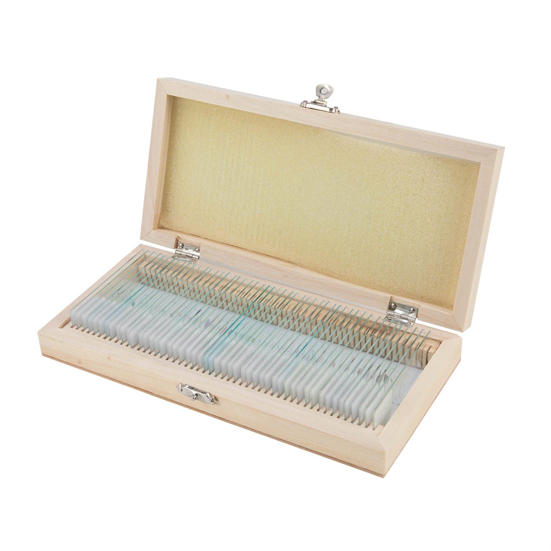 Biology Glass Prepared Microscope Slides Specimens Wooden Slide Storage Box Case 50PCS