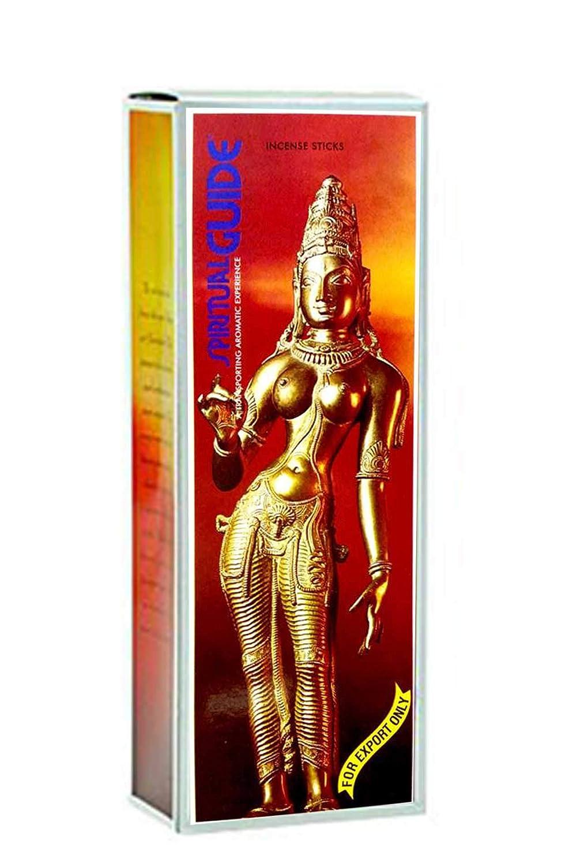 Incenso Padmini Spiritual Guide–6Scatole x 20gr.–120bastoncini
