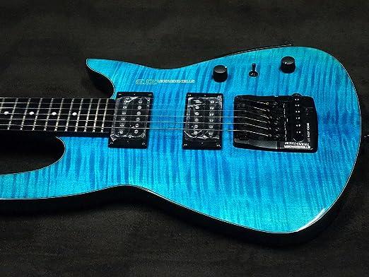 Used Steinberger zt-3 Custom Trans azul guitarra eléctrica: Amazon.es: Instrumentos musicales