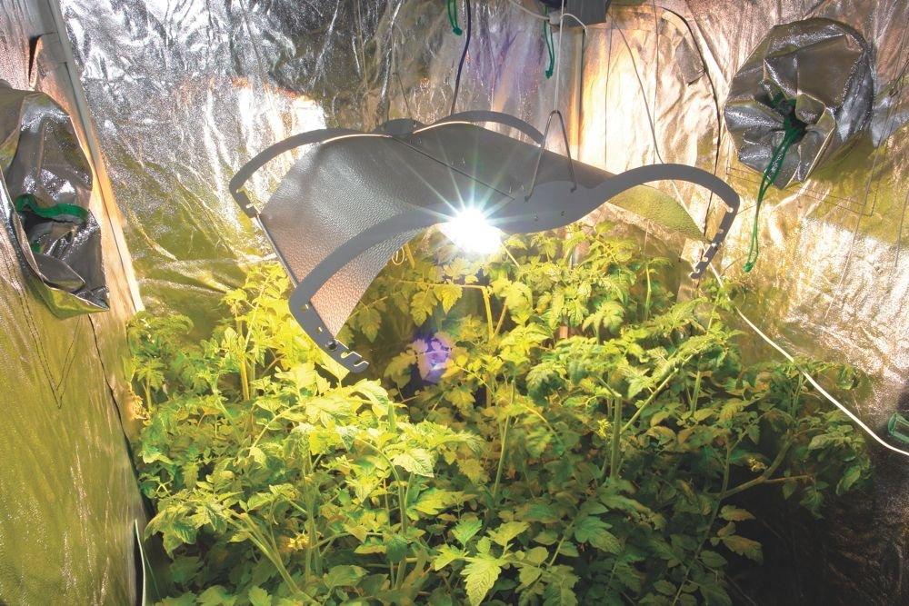 PowerPlant Mantis Reflektor ohne Kabel f/ür Gew/ächsh/äuser