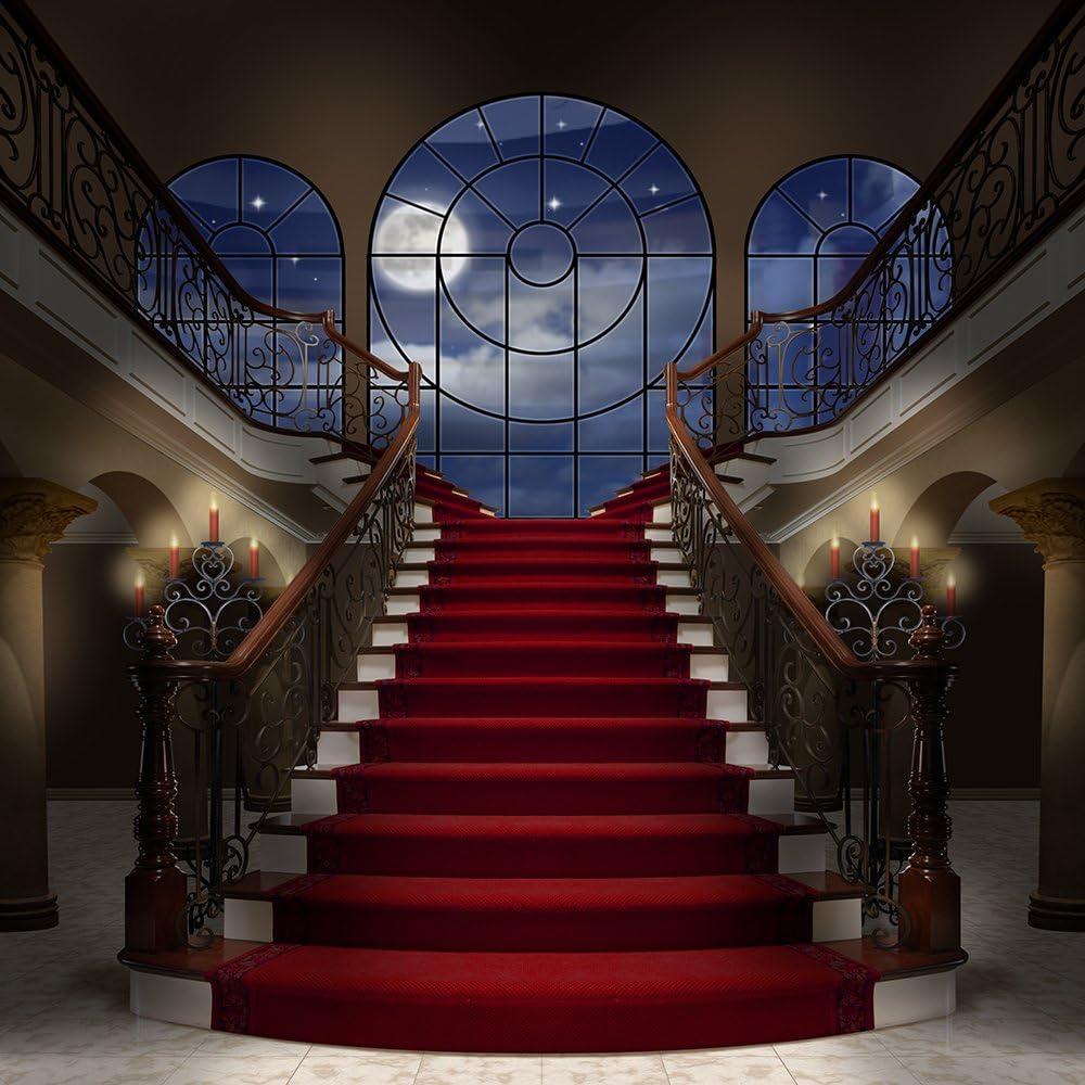 Fotografía Telón de fondo – Escalera de Palacio con mármol suelo – 10 x 10 pies. – 100% sin costuras poliéster: Amazon.es: Electrónica