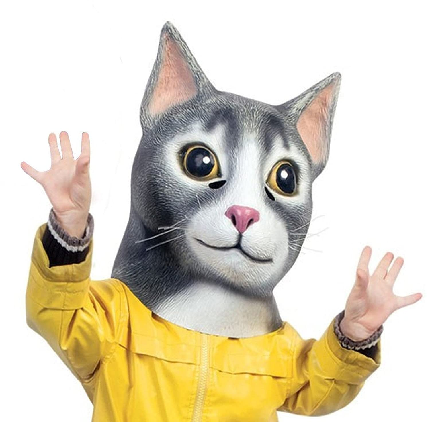 Amazon.com: Cat Latex Mask by Accoutrements - Halloween Costume ...