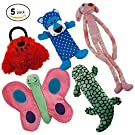 Dawgeee Dog Toys Value 5 Pack for Puppy, Small Dogs and Medium Dogs, Squeaky Toy, Plush Toys, Rope Pet Toys, Dog Chew Toys (Squeaky Pack)