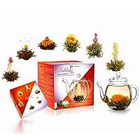 Creano theebloemen Mix - Cadeauset ErblühTee met glazen kan 500ml witte thee & zwarte thee met 6 theeballetjes elk 3x…