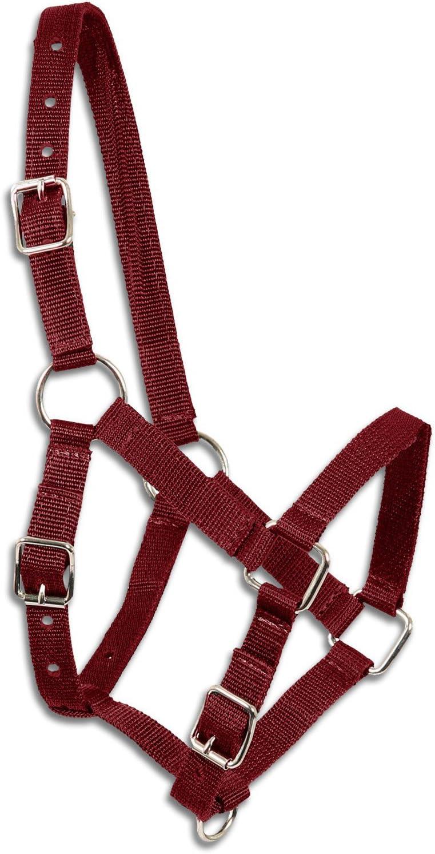 Potro–Cabestro Vino Rojo,–Cabestro para Minis Hetty, potro caballo, de madera, potro–Cabestro Shetty–Brida de nylon